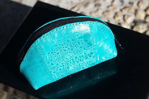Coloured cane toad coin purse