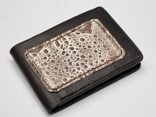 Cane toad Roo Coin wallet