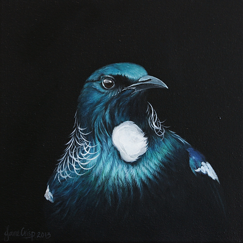 Tui Portrait  SOLD