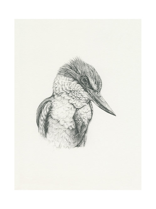 The Fisher (graphite)