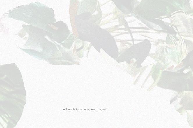 Screen Shot 2020-02-24 at 21.54.56.png