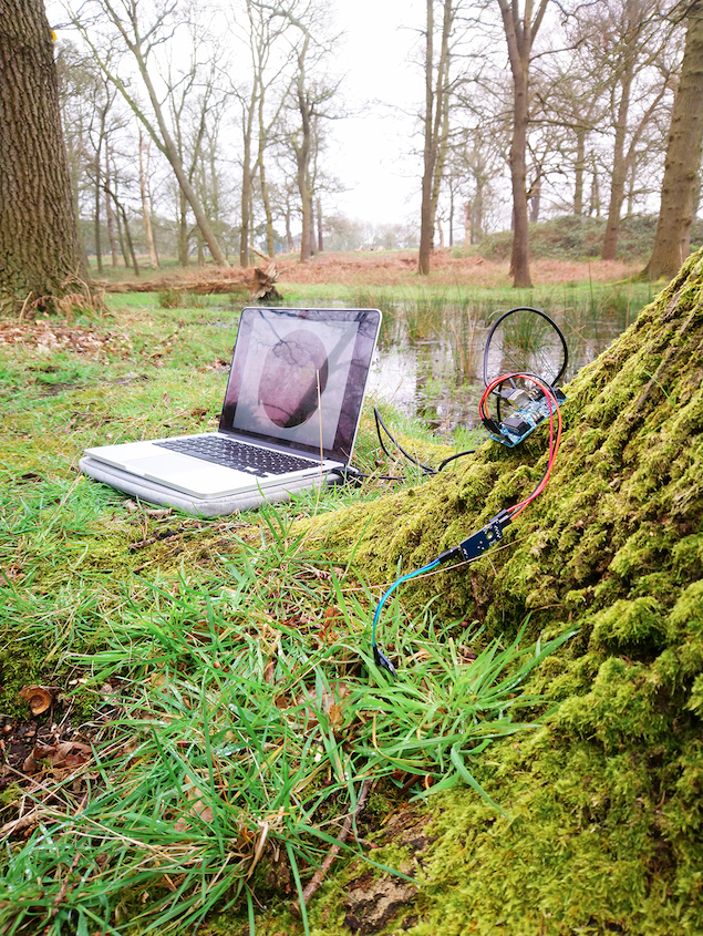 Tree arduino closeup copy.png