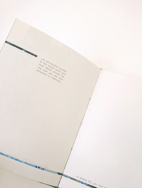 0 Edit of book fairies.JPG