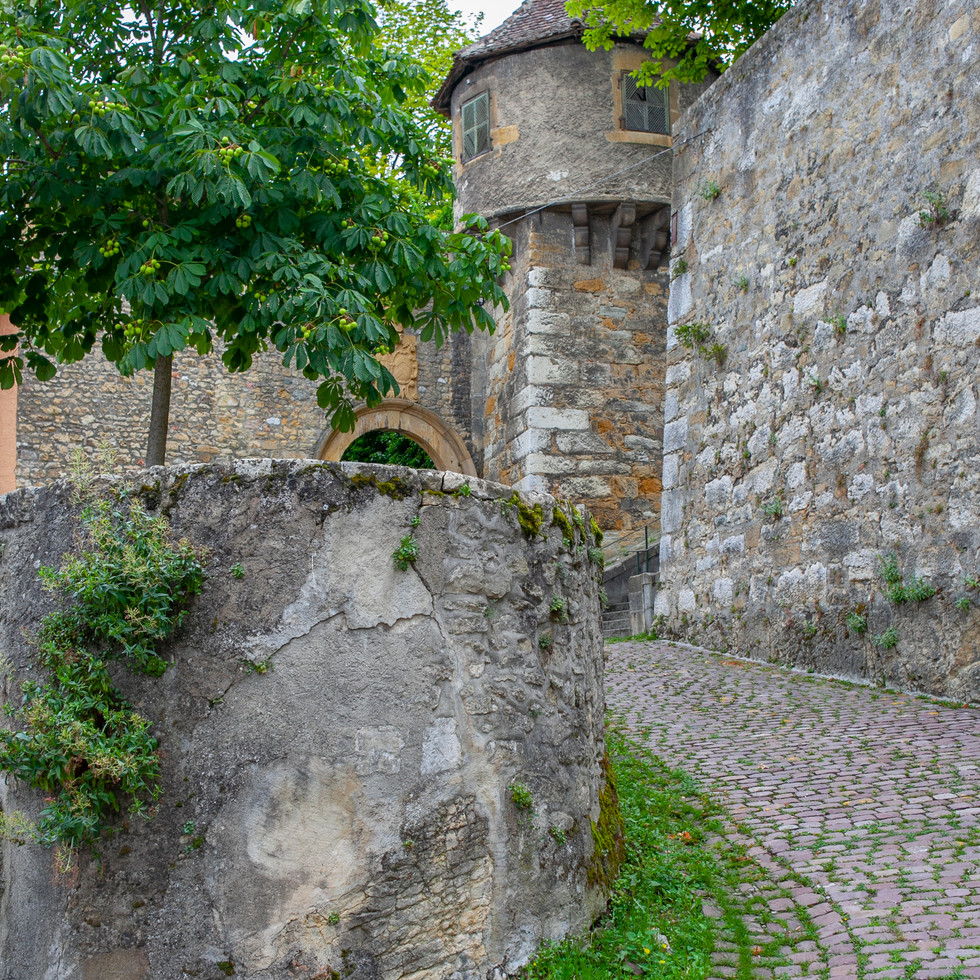 Chateau of Neuchatel