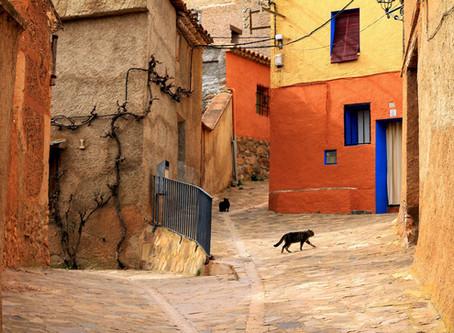 Situación del mundo rural en España