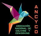 Ancyco.jpg