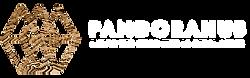 logo Pandorahub HZ White.png