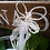 Thumbnail: Handmade Butterfly Fairy Bridal Wand