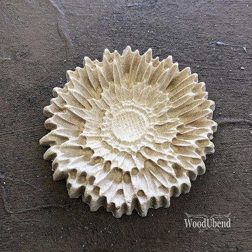 Flat Carnation WUB0356