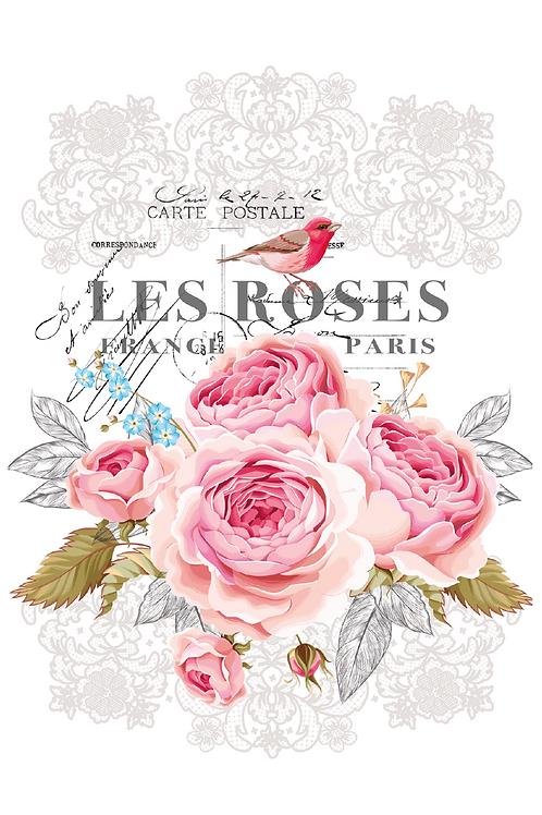 "Les Roses 11"" x 15"""
