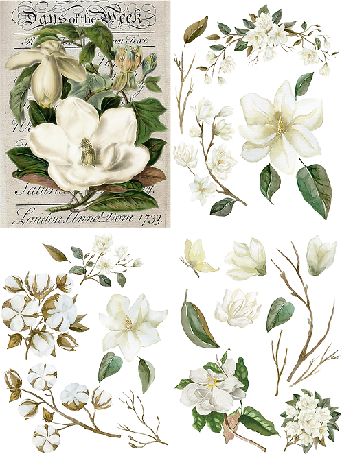 Magnolia Garden Transfer from the Belles and Whistles Line by Dixie Belle Paint