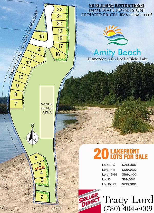 Amity-Beach-Realtor-flyer-NEW.jpg