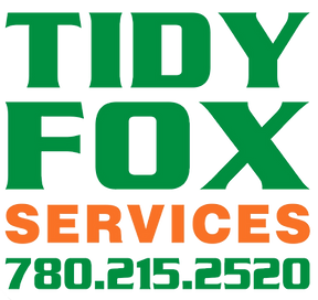 Tidy%20Fox%20logo%20text_edited.png