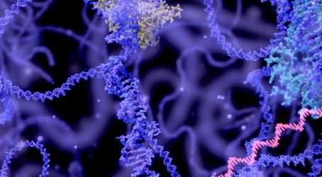 Epigenetics and Attitude- Using the Power