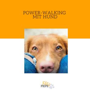 Power Walking & Training mit Hund