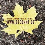 Herbst Walk im Winter und im Herbst in Hamburg Altona
