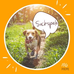 Wie unterscheidet sich das Riechorgan von Mensch & Hund?