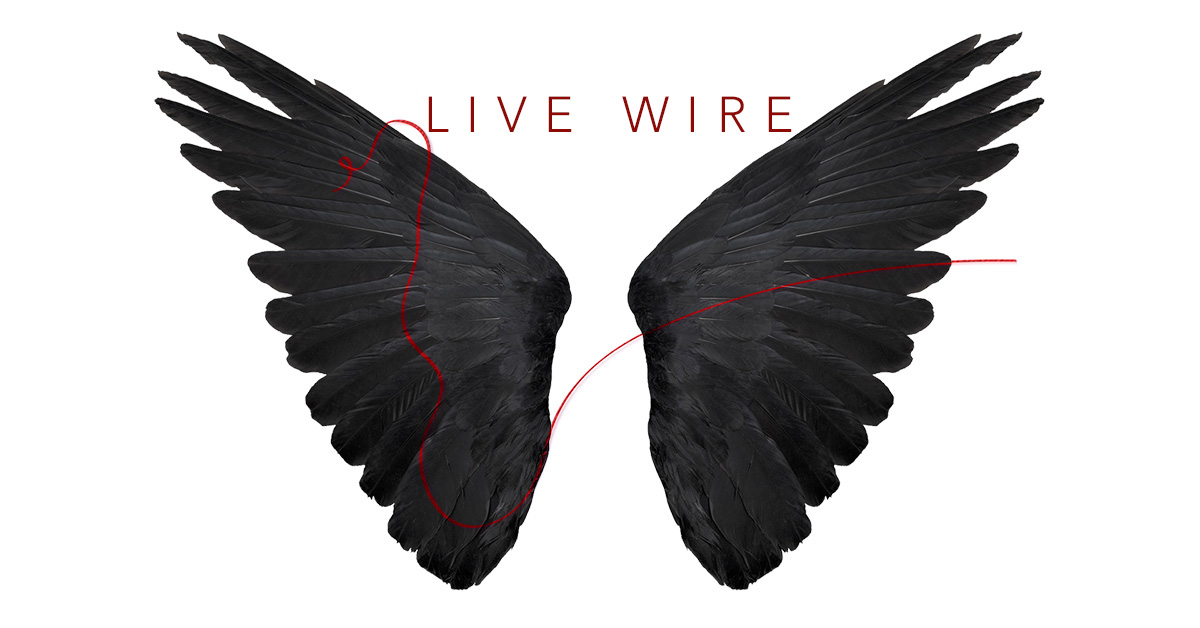 Live Wire 2020 Wingspan-fb_v2 copy