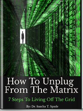 How To Unplug From The Matrix Book.jpg