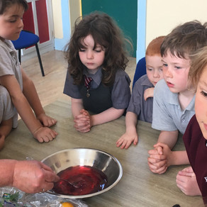 Jelly making in Junior Infants!