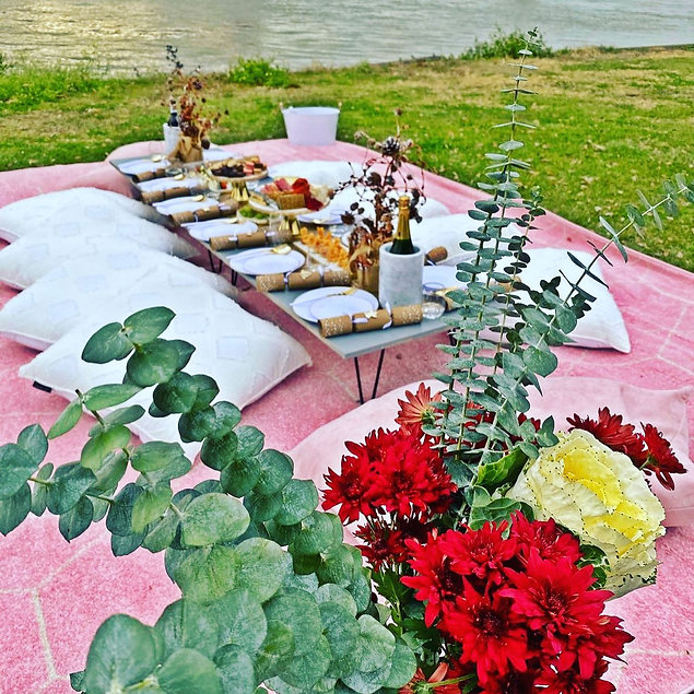 luxury picnic party event setup the fly mississippi river new orleans