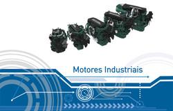 Motores Industriais