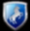 EliteMobileDetailing_TRANSPARENT-Shield