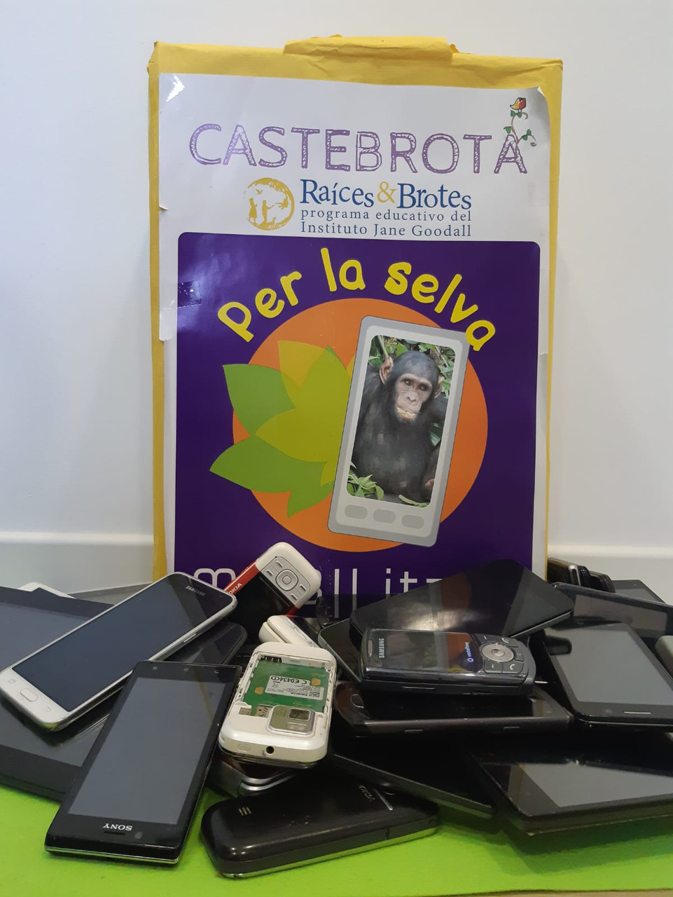 R&B Castebrota y movilizate