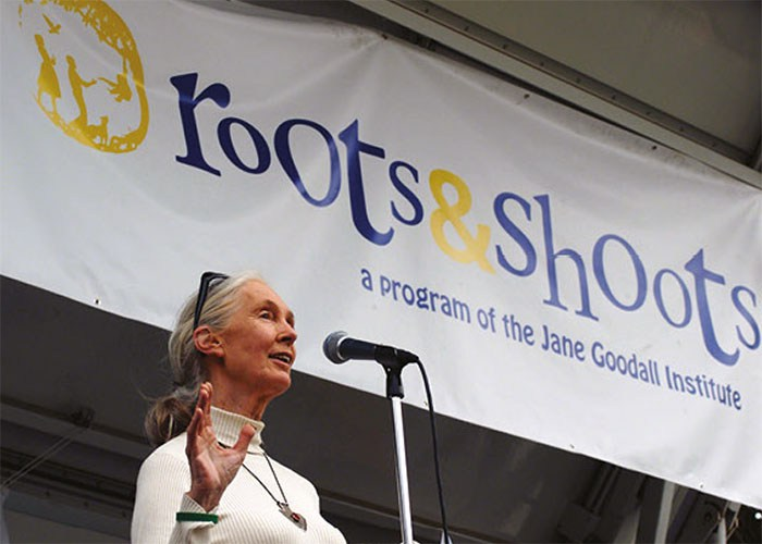 Dr-Jane-Goodall-speaking-at-a-Peace-Day-