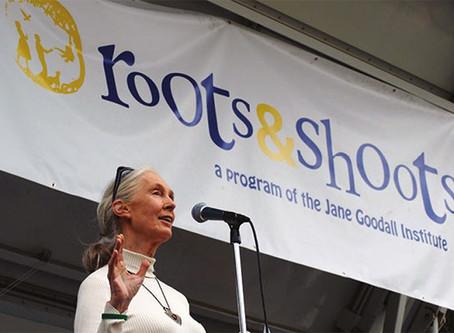 Jane Goodall: Una mujer inspiradora
