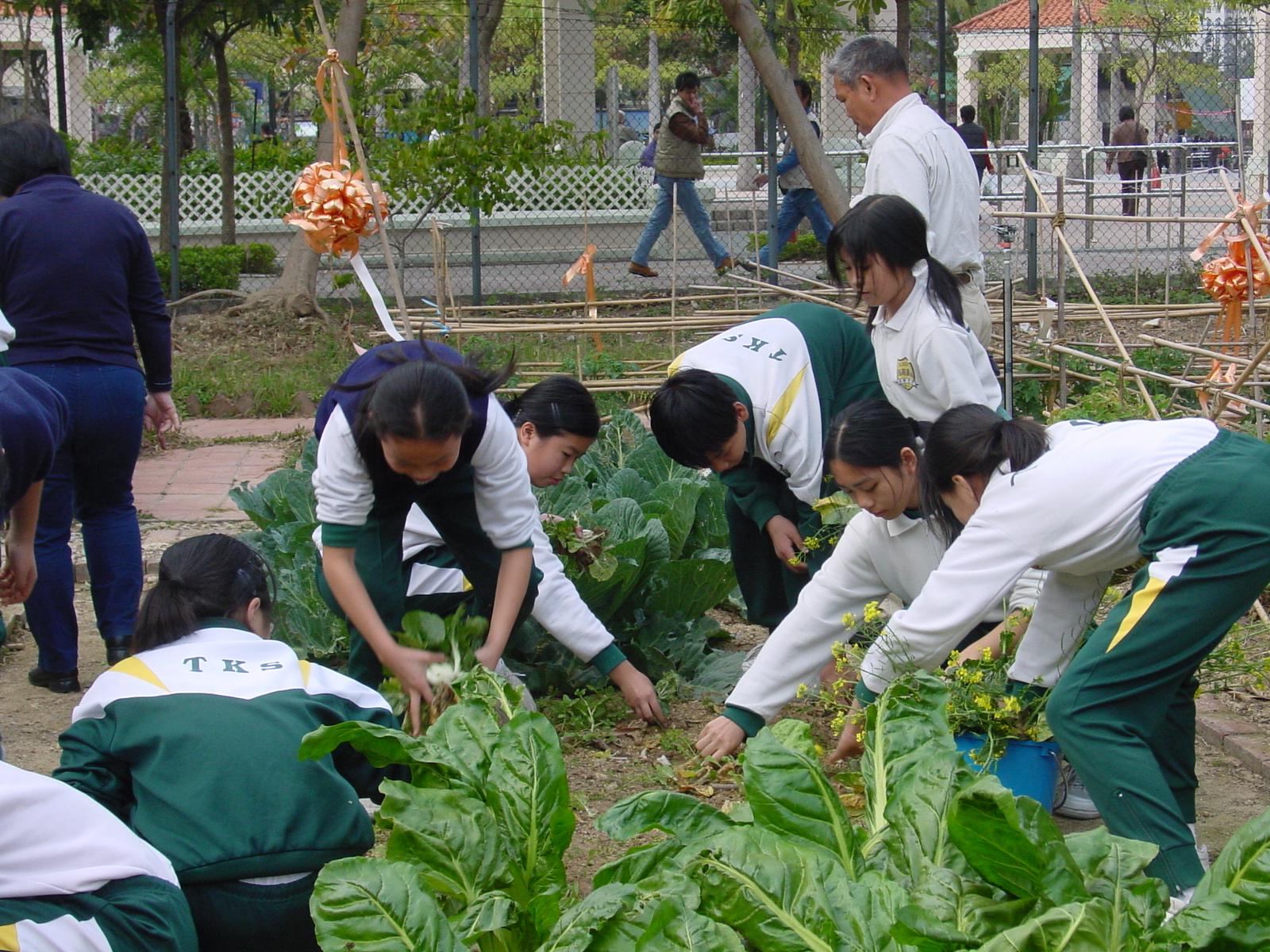 Tung_Koon_School2