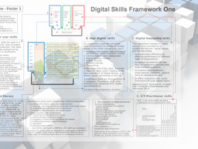 "Digital Skills Framework One (""DSFOne"")"