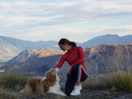 A girl's best friend- Meet Saska dog, my assistant