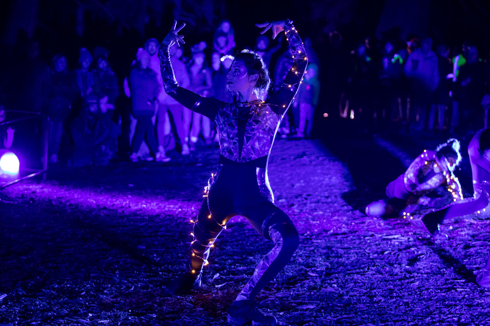 Stag dance.jpg