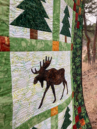 Moose in the Pines