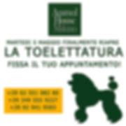 TOELETTATURA DEF.jpg