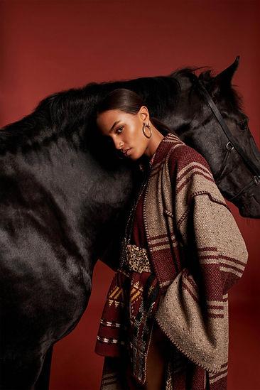 Noleggio cavalli a Milano