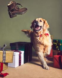 Tod's Christmas