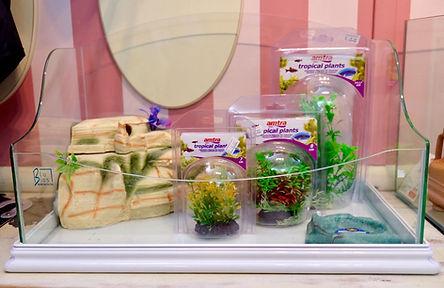 Tartarughiere in vetro