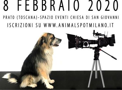 EVENTO CASTING PER ANIMALI ATTORI E MODELLI 8/02 A PRATO (TOSCANA)