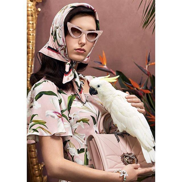 Dolce e Gabbana Pappagallo Cacatua