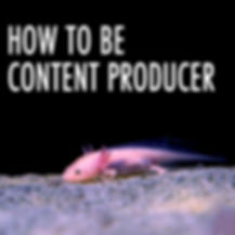 Content Producer.jpg
