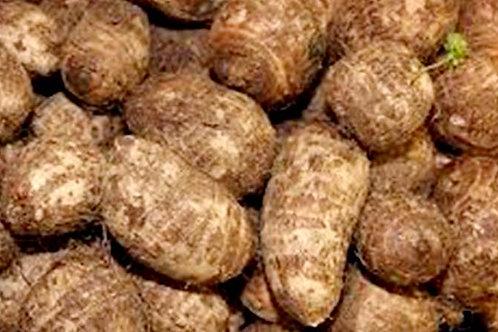 Taro -Root (Arbi) अरबी