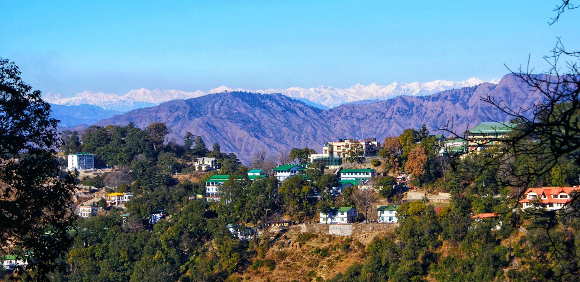 snowlion hills india.jpg