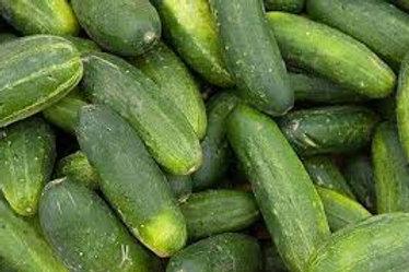 Green Cucumber Seedless (बिना बीज का खीरा)