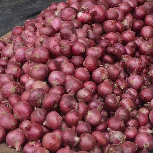Small Onion (छोटे प्याज़)