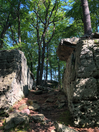 A rocky path in Cook Forest PA