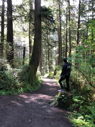 A trail near Hug Point in Oregon