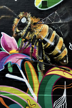 Bee on Flower, Street Art, Camden Town, London