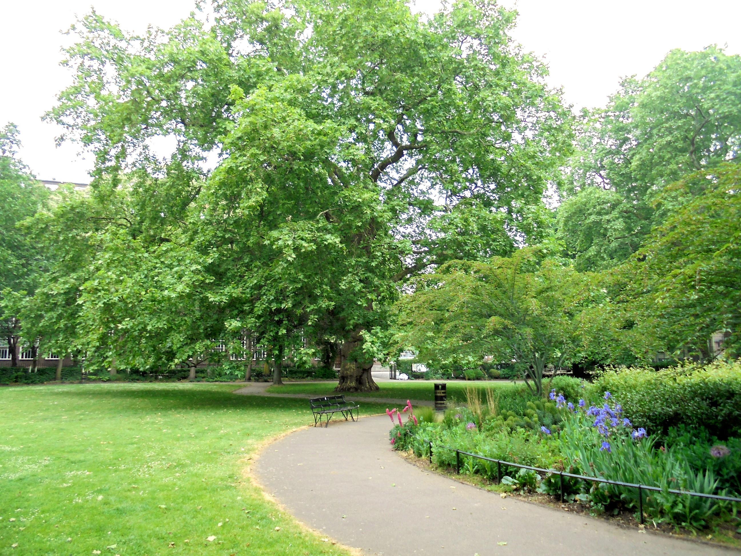 Brunswick Square Gardens
